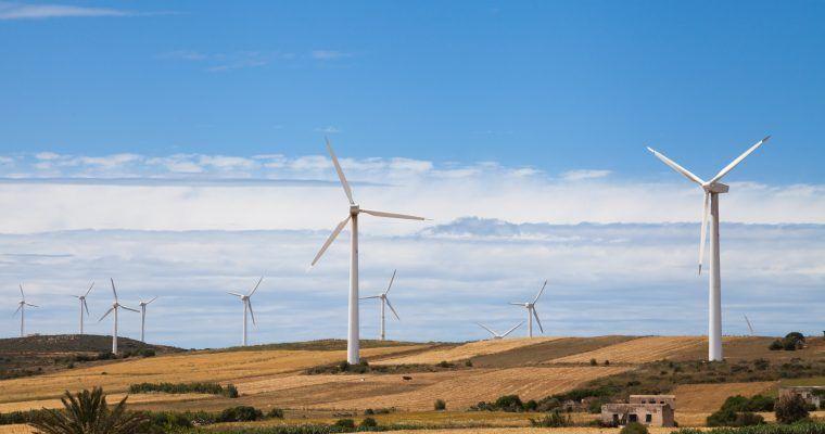20 datos que deberías conocer sobre ecología y medioambiente