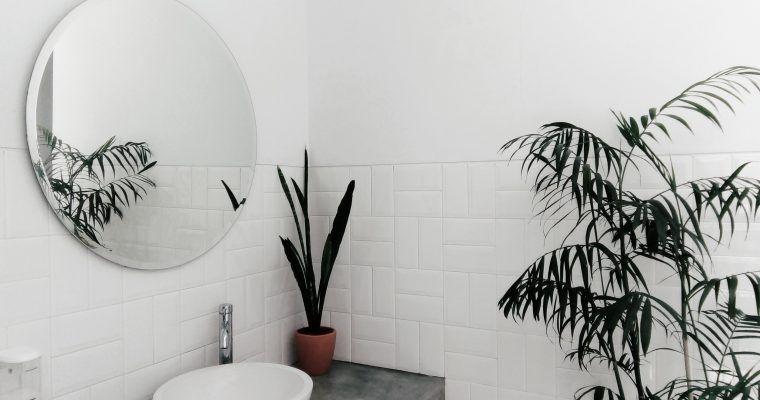 5 Cambios Para un Baño Zero Waste