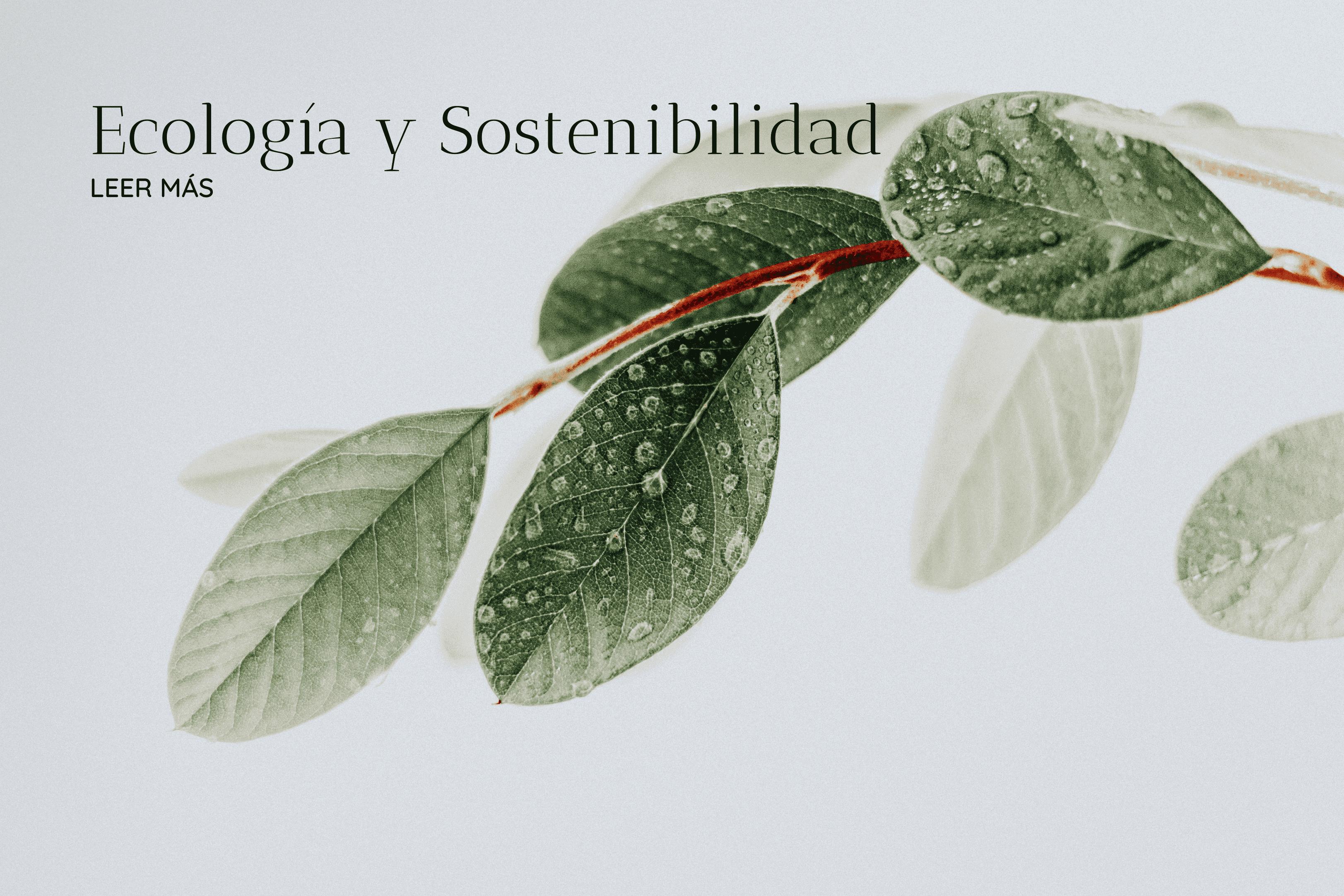 categoría ecologia y sostenibilidad